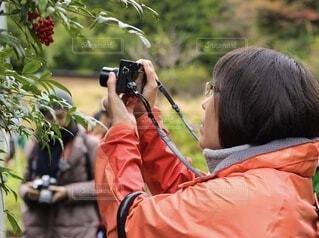 写真を撮る女性の横顔の写真・画像素材[4874724]