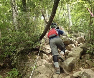登山中の男性の後ろ姿の写真・画像素材[4874727]