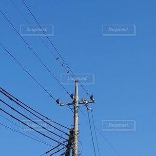 電柱と青空の写真・画像素材[4874350]