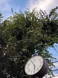 青空と時計02の写真・画像素材[4879787]
