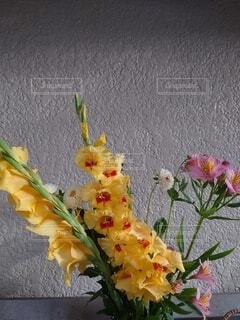花瓶の花の写真・画像素材[4879793]