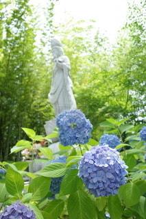 花園の近くの写真・画像素材[4924642]