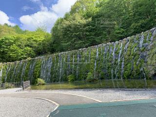 滝の写真・画像素材[4918125]