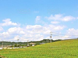 【夏空×緑】夏の風景の写真・画像素材[4874802]