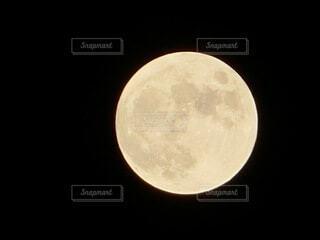 hunter's moonの写真・画像素材[4947612]