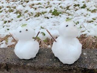 雪の日に作った可愛いペアの雪だるま。の写真・画像素材[4875541]