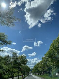青い空と木々の緑のコントラストが最高の写真・画像素材[4875780]