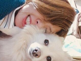 犬と飼い主との温度差の写真・画像素材[4913440]