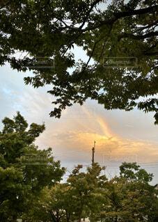 雲の中の虹の写真・画像素材[4875653]