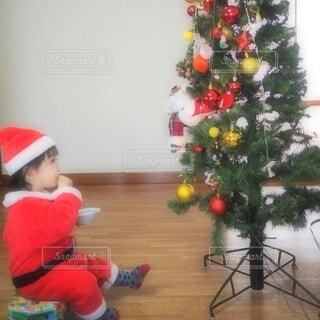 クリスマスツリーを見つめている子供の写真・画像素材[4908368]