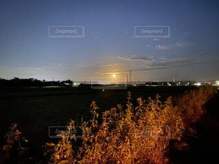 港町から臨む月の写真・画像素材[4875702]