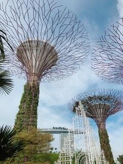 シンガポールの空の写真・画像素材[4876603]