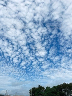 空の雲の群の写真・画像素材[4876544]