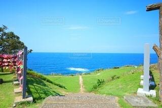 青空と青い海を望む青い芝生の岬の写真・画像素材[4881821]