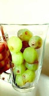 マスカットの葡萄 アメリカ産の写真・画像素材[4943827]