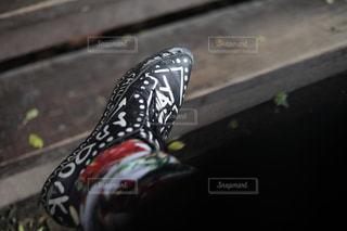 No.227845 靴