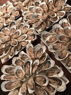 牡蠣の写真・画像素材[298226]