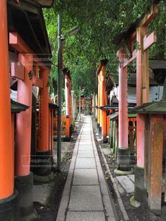 京都 - No.222628
