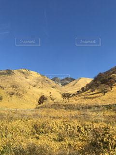 背景の山のフィールド - No.962803