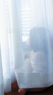カーテンの向こうで外を見つめるこどもの写真・画像素材[4918360]