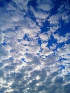 雲の群の写真・画像素材[4908174]