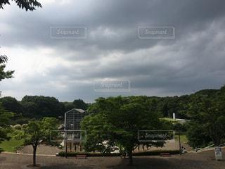 公園の写真・画像素材[541119]