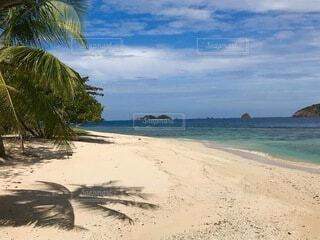 海の隣の砂浜の写真・画像素材[4942109]