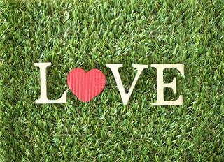 Love♡の写真・画像素材[2563617]