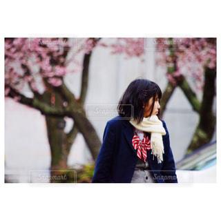 梅の花が咲いてて春っぽい🌸の写真・画像素材[360486]