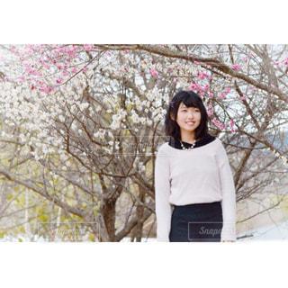 梅の木の前に立つ人の写真・画像素材[1069695]