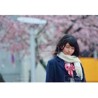 梅の花の木の前に立つ人の写真・画像素材[1072275]