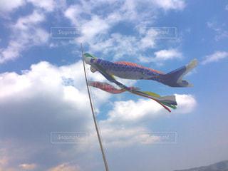 青い空を飛んでいる魚の写真・画像素材[1106095]