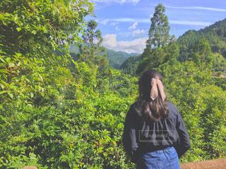 森の前に立っている人の写真・画像素材[1303117]