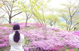 公園の花の前に立つ人の写真・画像素材[2412315]