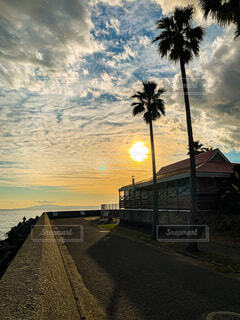 sunset beachの写真・画像素材[4951582]