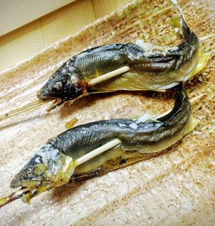 魚の写真・画像素材[225607]
