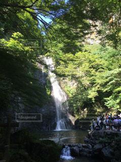 滝 - No.225868