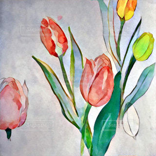 花の写真・画像素材[255497]