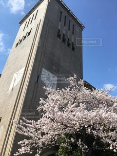 東京都立大学の写真・画像素材[464114]