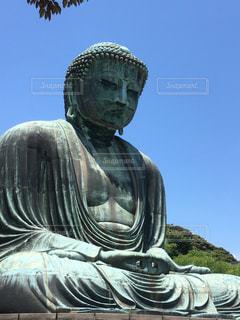 鎌倉の大仏の写真・画像素材[556913]