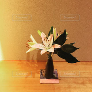 花瓶の写真・画像素材[228990]