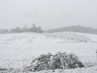 冬の写真・画像素材[249475]