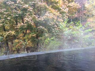 温泉の写真・画像素材[228796]