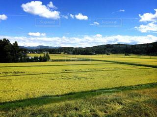 田舎の写真・画像素材[230677]