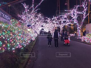 夜の写真・画像素材[253020]