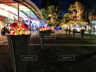 夜景の写真・画像素材[253024]