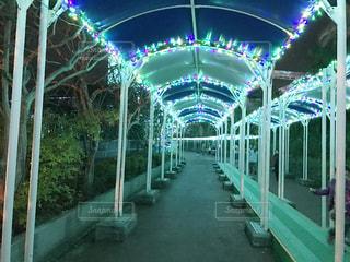 夜景 - No.253036
