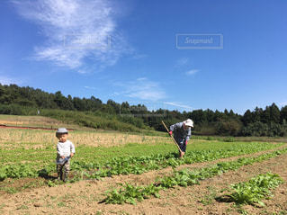 おばあちゃんと農作業の写真・画像素材[241717]