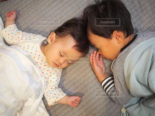 二人仲良くお昼寝中の写真・画像素材[1772451]