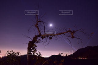 夜景の写真・画像素材[228647]